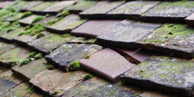 Wrinehill roof repair costs